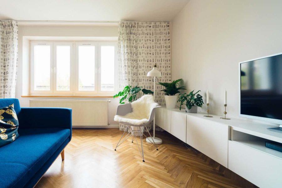 idée décoration salon canapé bleu