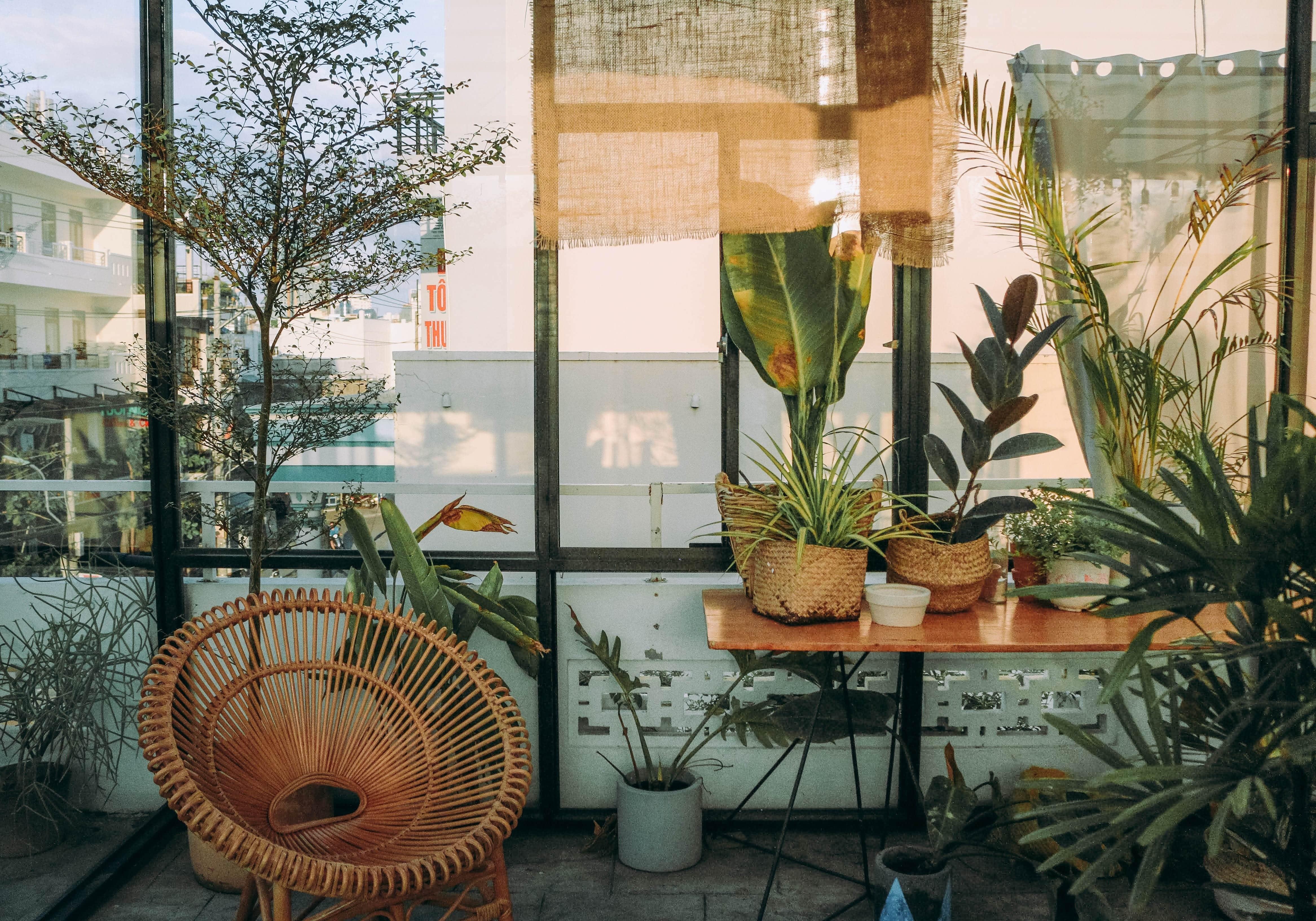 Etagere Pour Plantes Interieures idées décoration et bien-être : les plantes intérieures - le